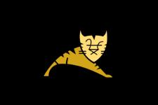 logo tomcat